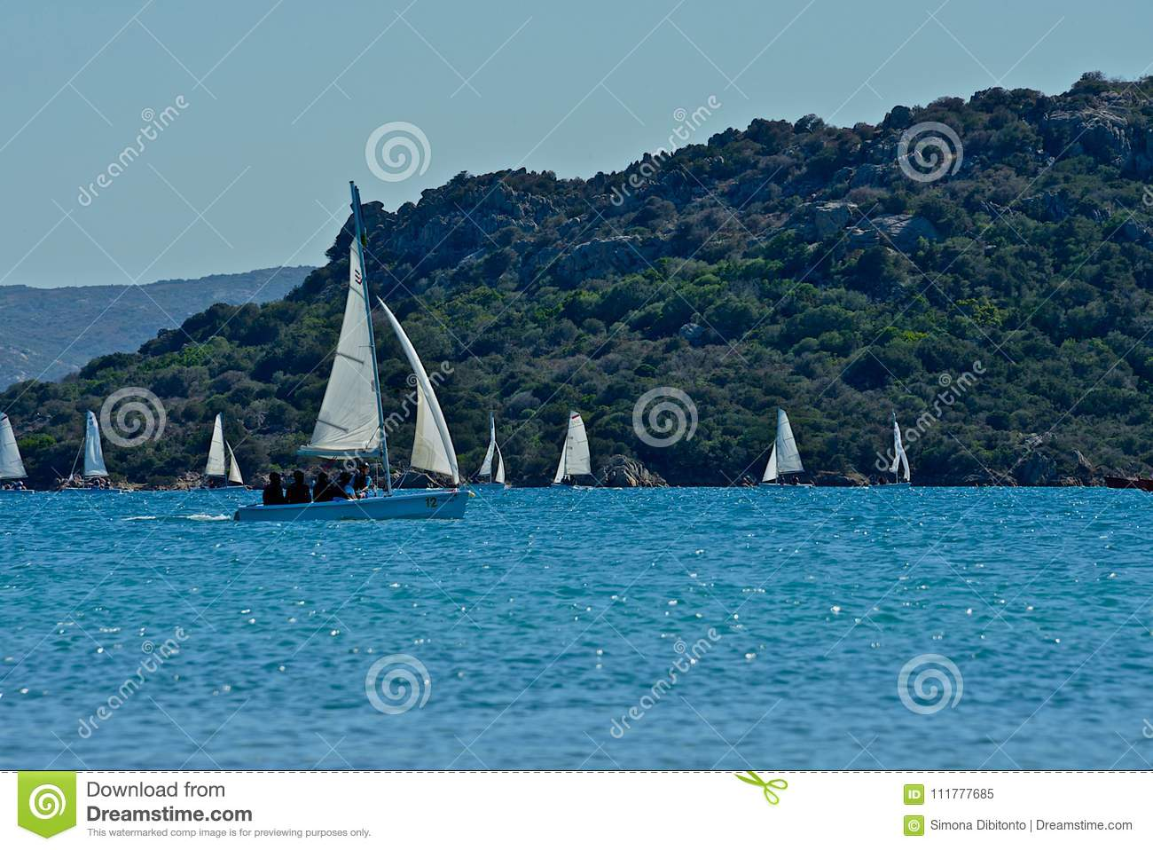 White sailing boats making school in the sea