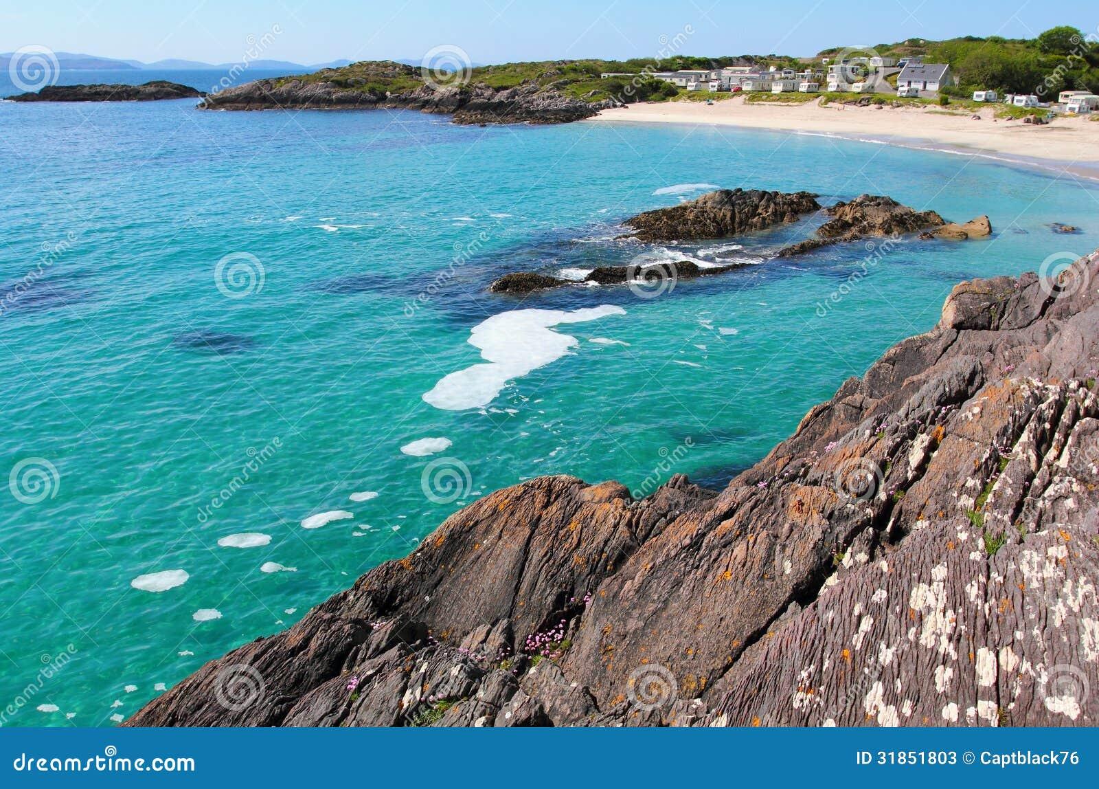 Sand Timers Ireland Rugged Irish Wildflower Coast By