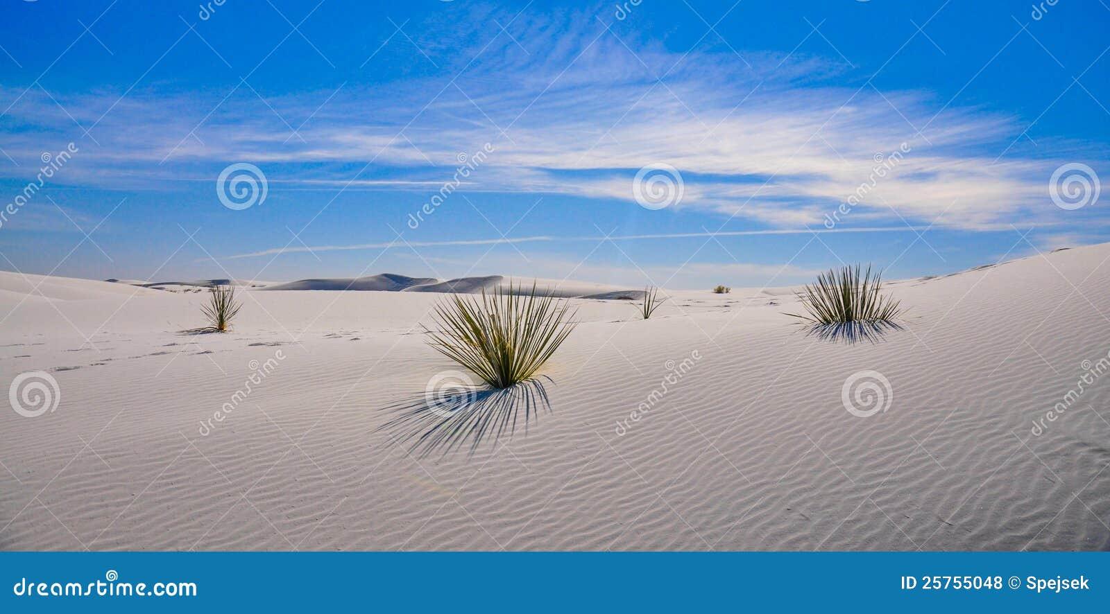 White sands national monument with desert dunes
