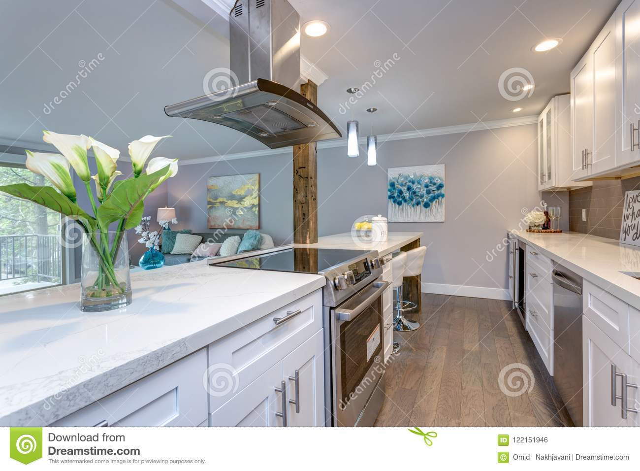 White Small Kitchen In Modern Apartment. Stock Photo - Image ...