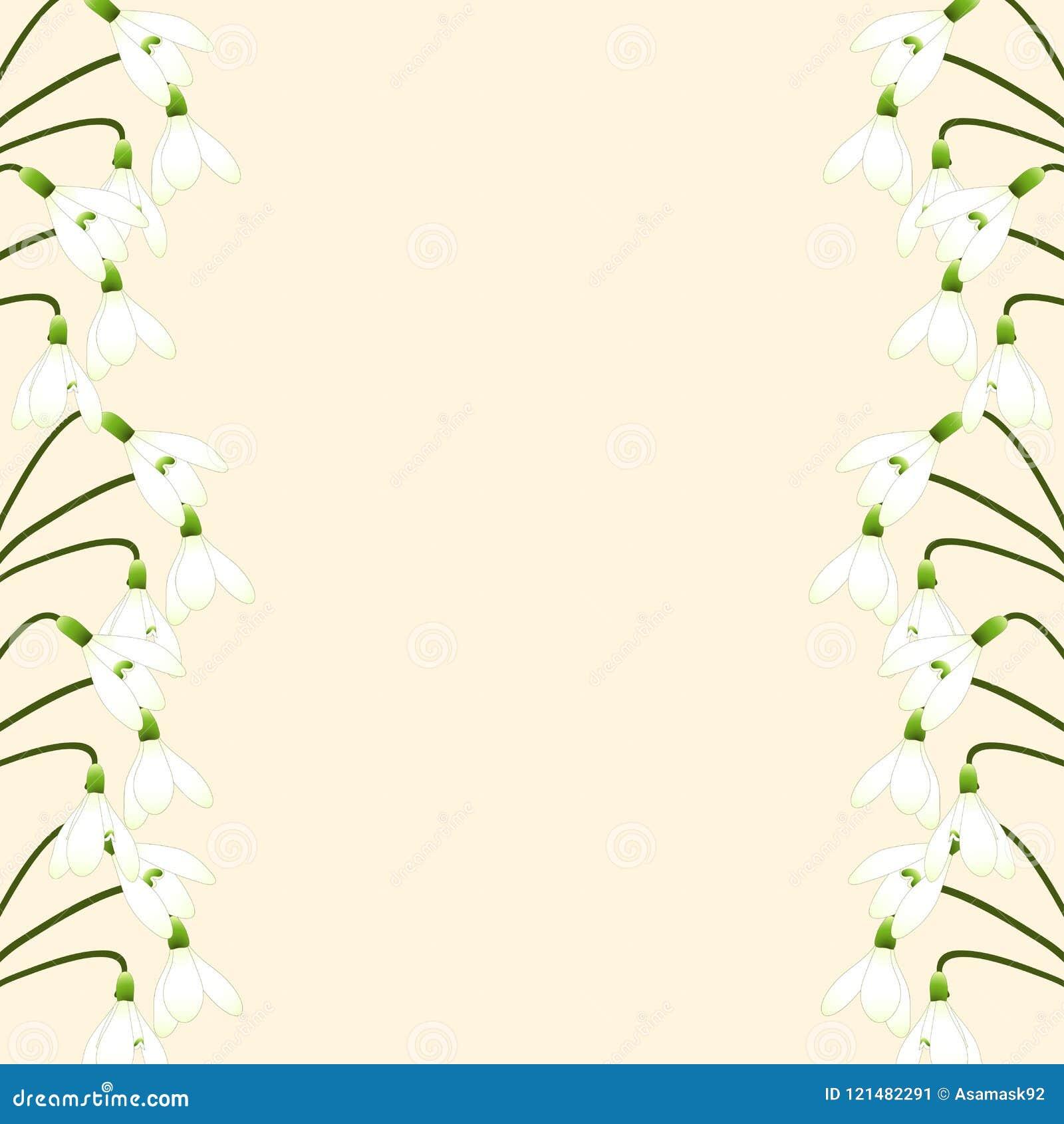 Wedding White Background: Ivory Wedding Background Stock Illustrations