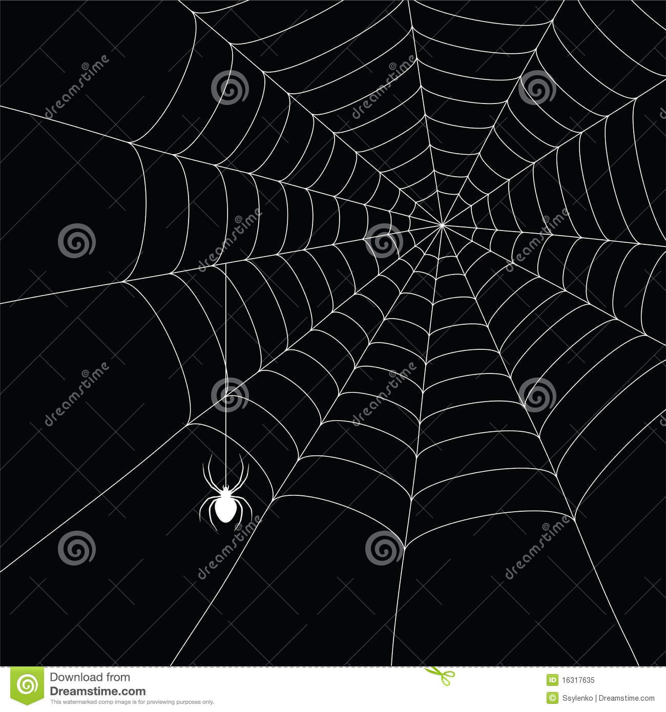 white spider and spider web royalty free stock photo