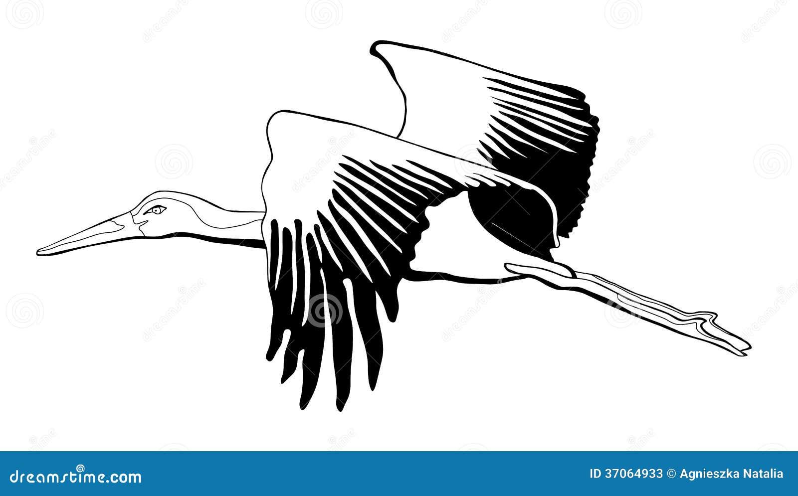 Stork Black And White