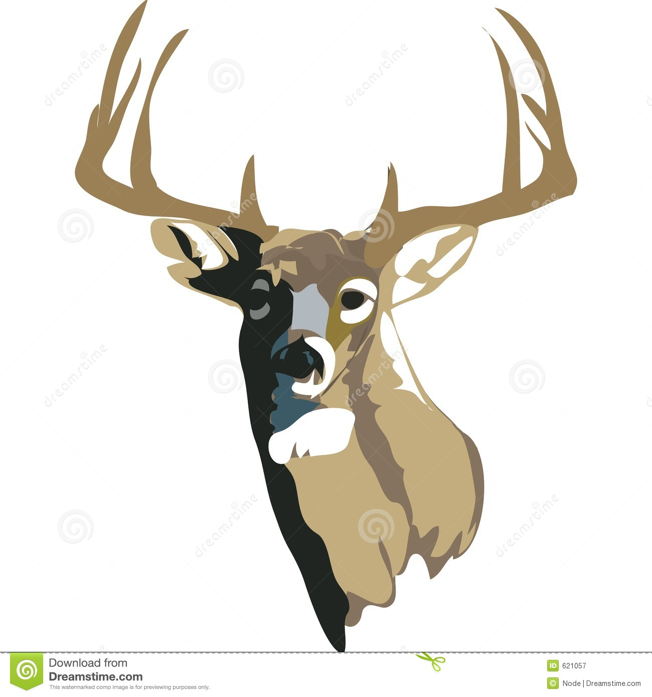 Image De Art Deer And Drawing: White Tailed Deer With Clipping Path Stock Illustration