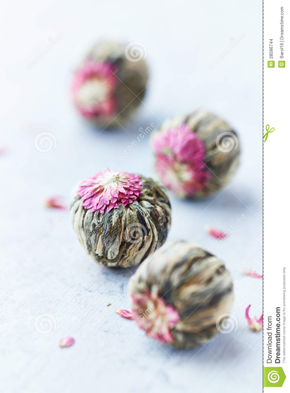 White Tea Balls With Lychee Flower Stock Photo Image Of Flower