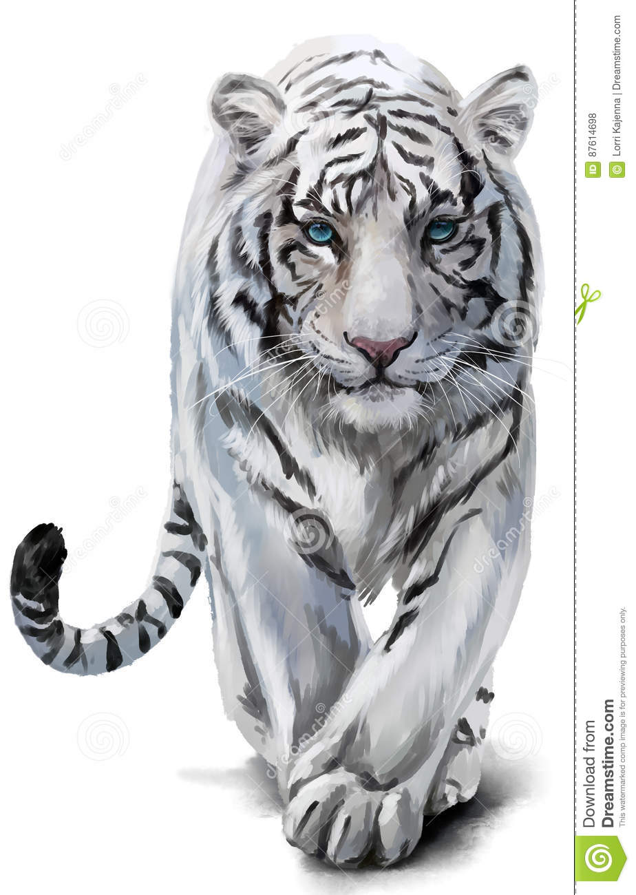White Tiger Watercolor Painting Stock Illustration