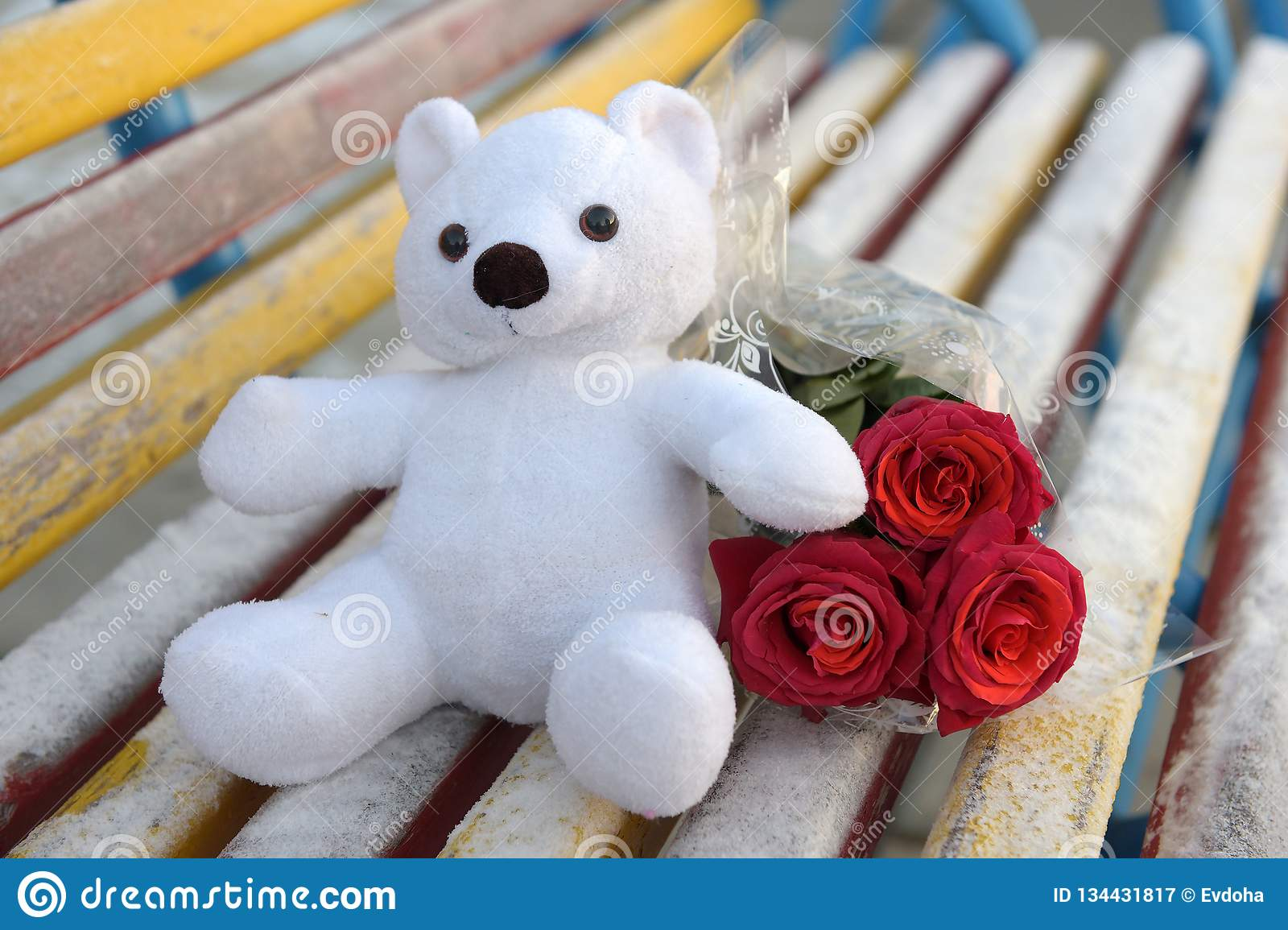White toy bear and a bouquet of red roses on a bench covered with hoarfrost