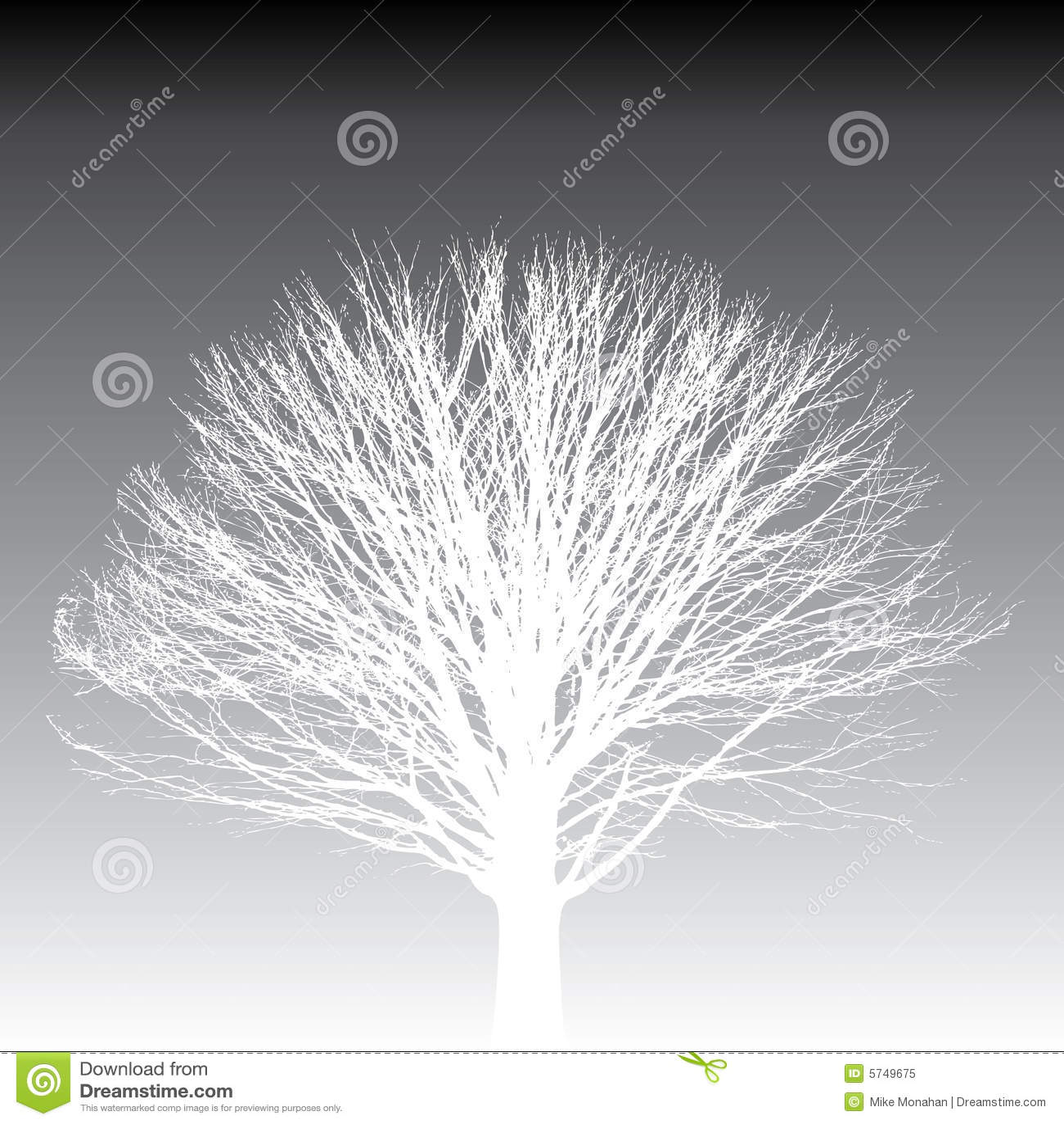 white tree silhouette royalty free stock photo image