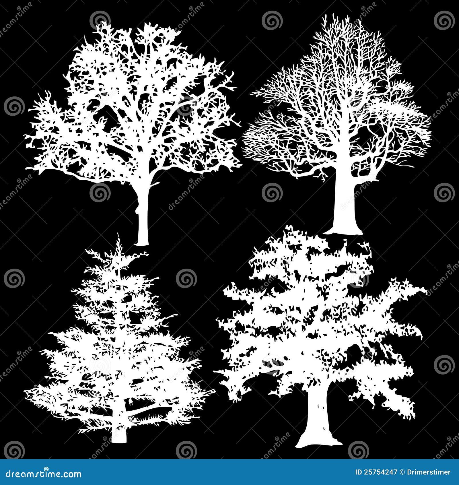 Black Flower On White Background Royalty Free Stock: White Trees On A Black Background Royalty Free Stock