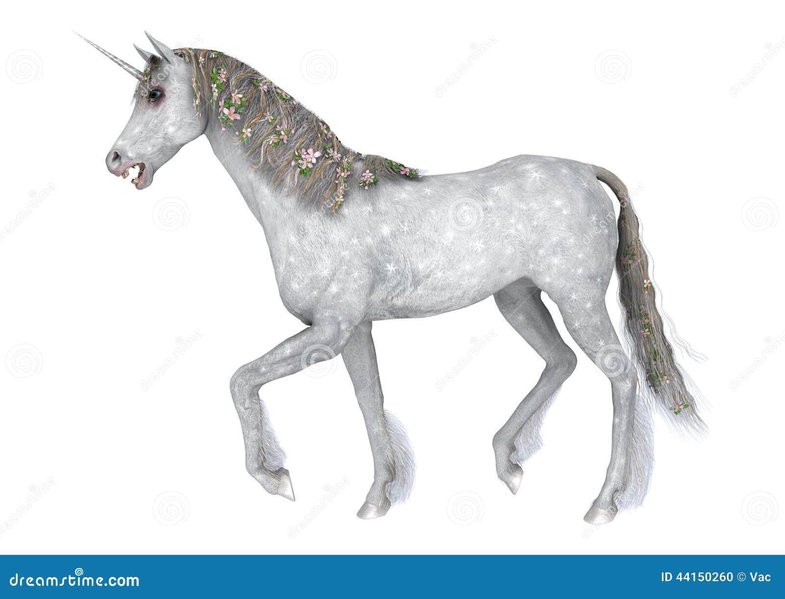 white unicorn stock illustration  image 44150260