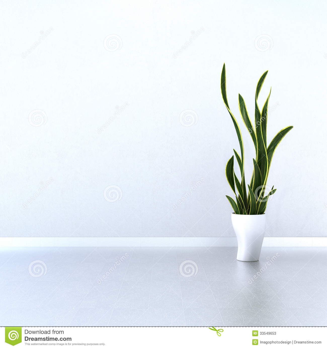 White Wall with Green Plant