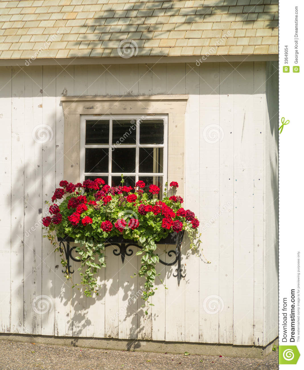white wall window and flowers in window box planter stock images image 33649054. Black Bedroom Furniture Sets. Home Design Ideas