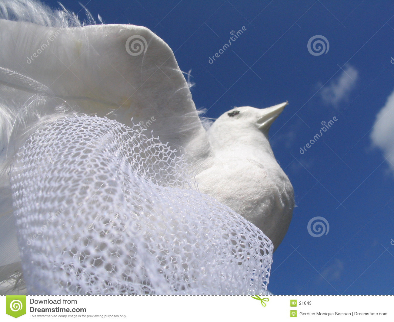 White Wedding Dove