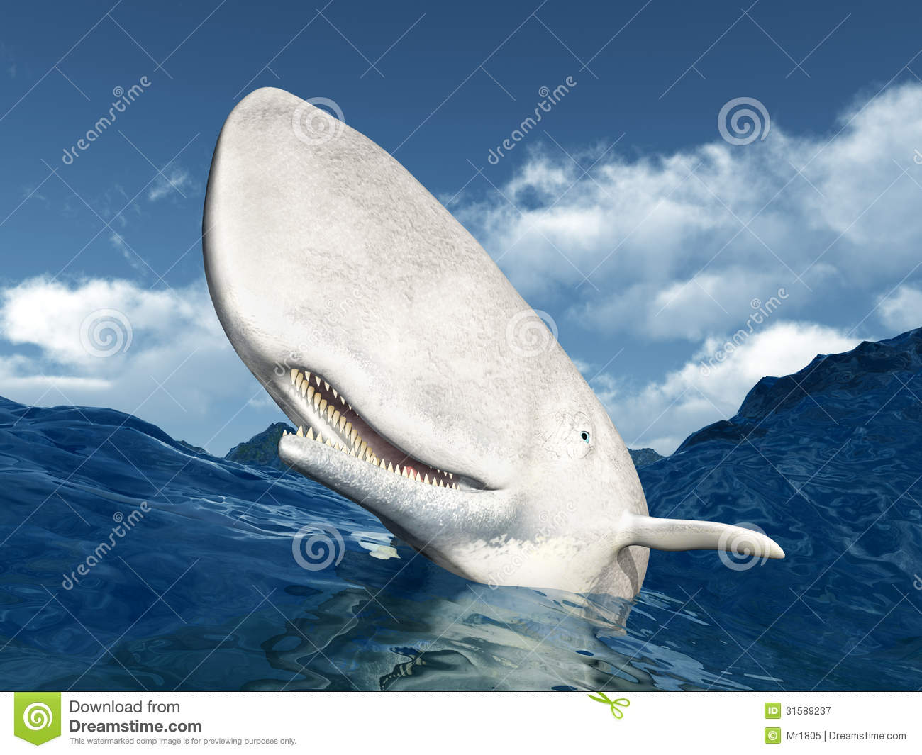 White Whale Royalty Free Stock Photography - Image: 31589237
