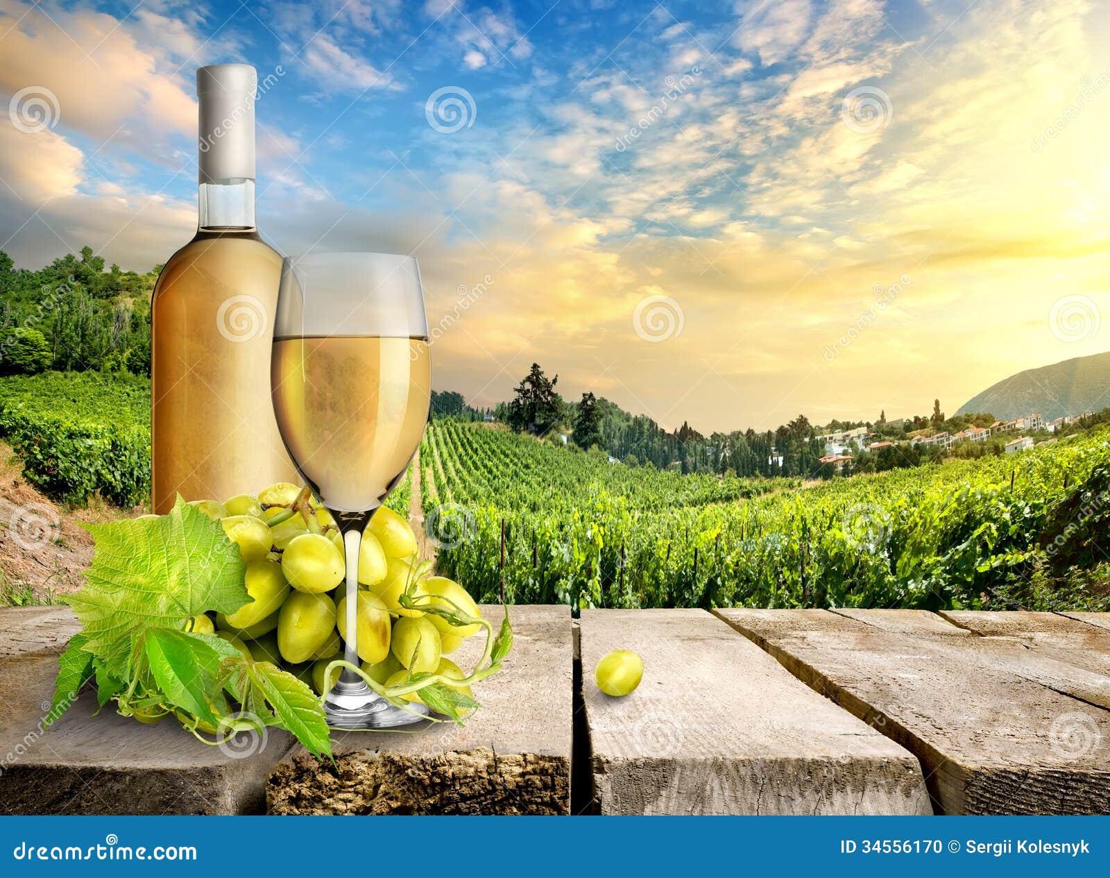 White wine and vineyard stock photo. Image of cloud ...