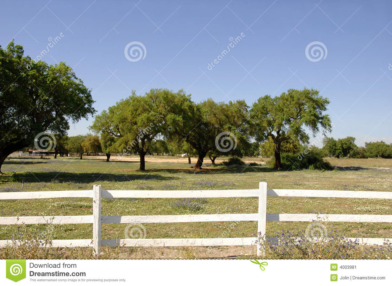 White Wooden Fence In ...