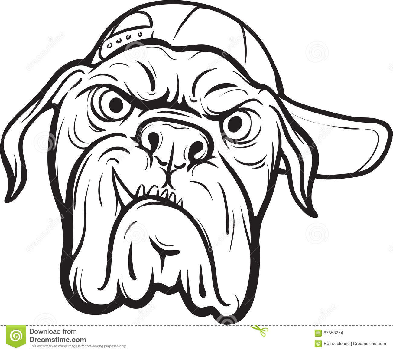 Whiteboard Drawing Angry Dog Face Stock Vector Illustration Of