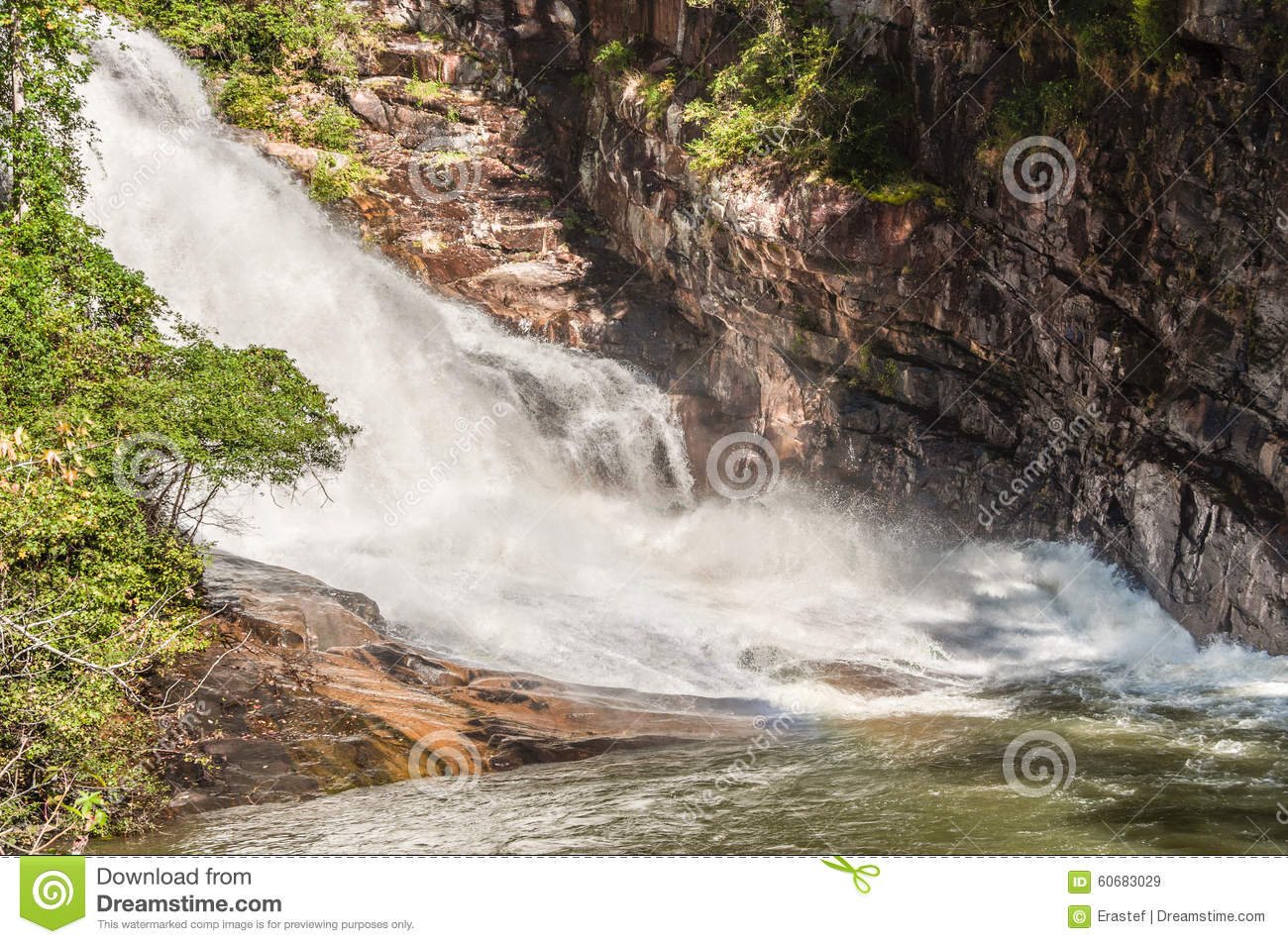 Whitewater In The Chattahoochee National Forest Stock Image