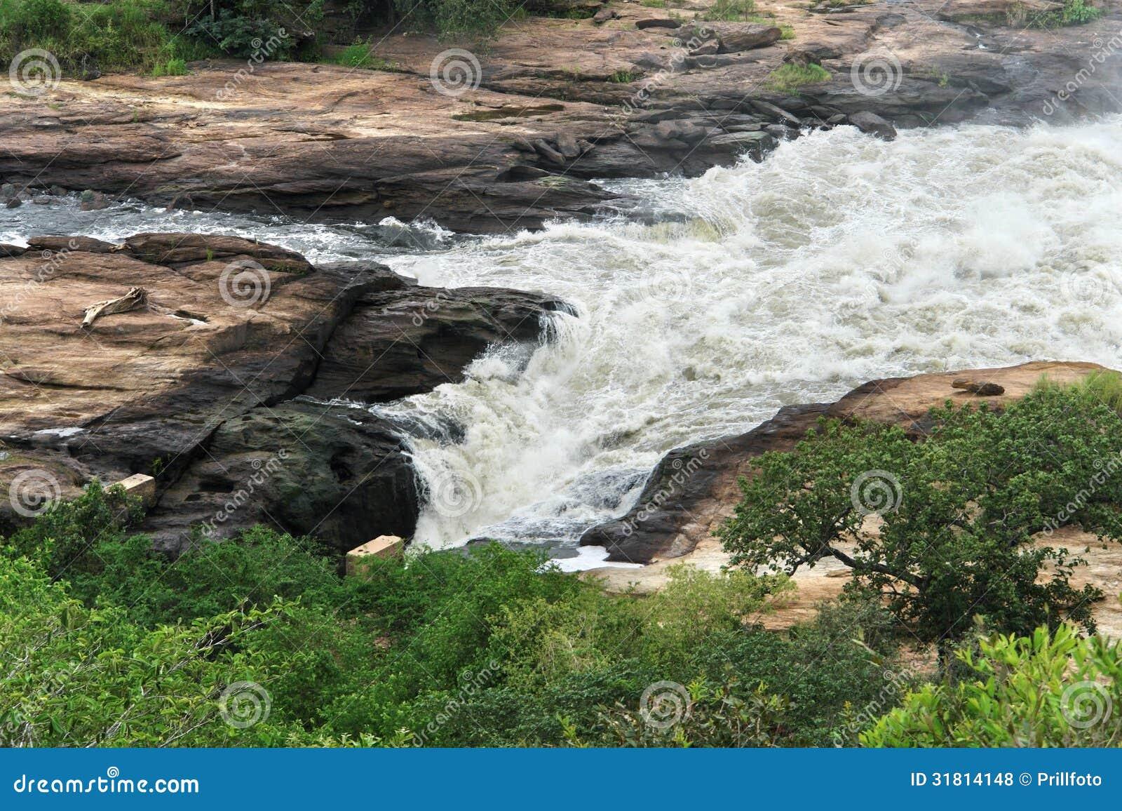 Whitewater em Murchison Falls em Uganda