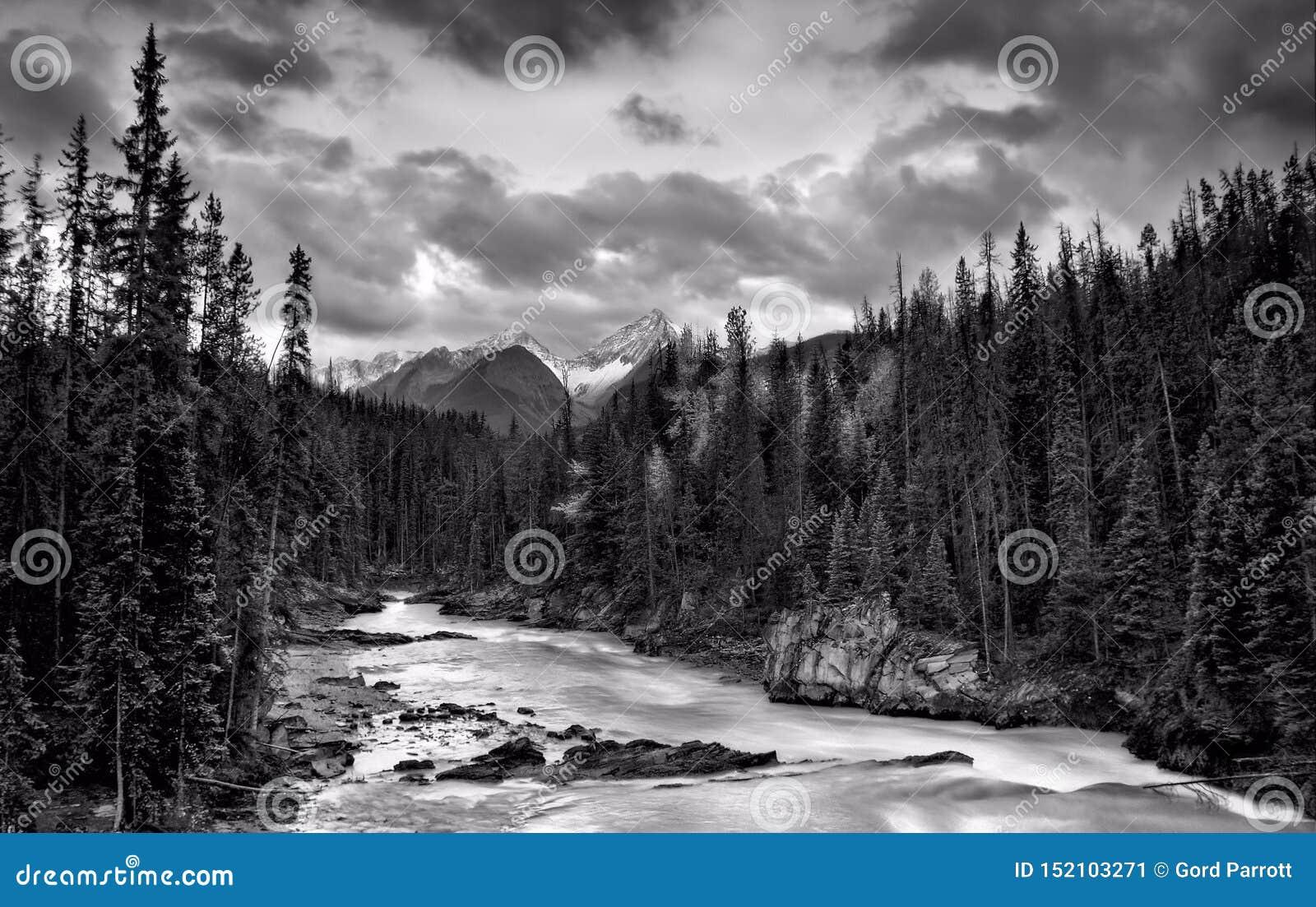 Whitewater en las montañas rocosas