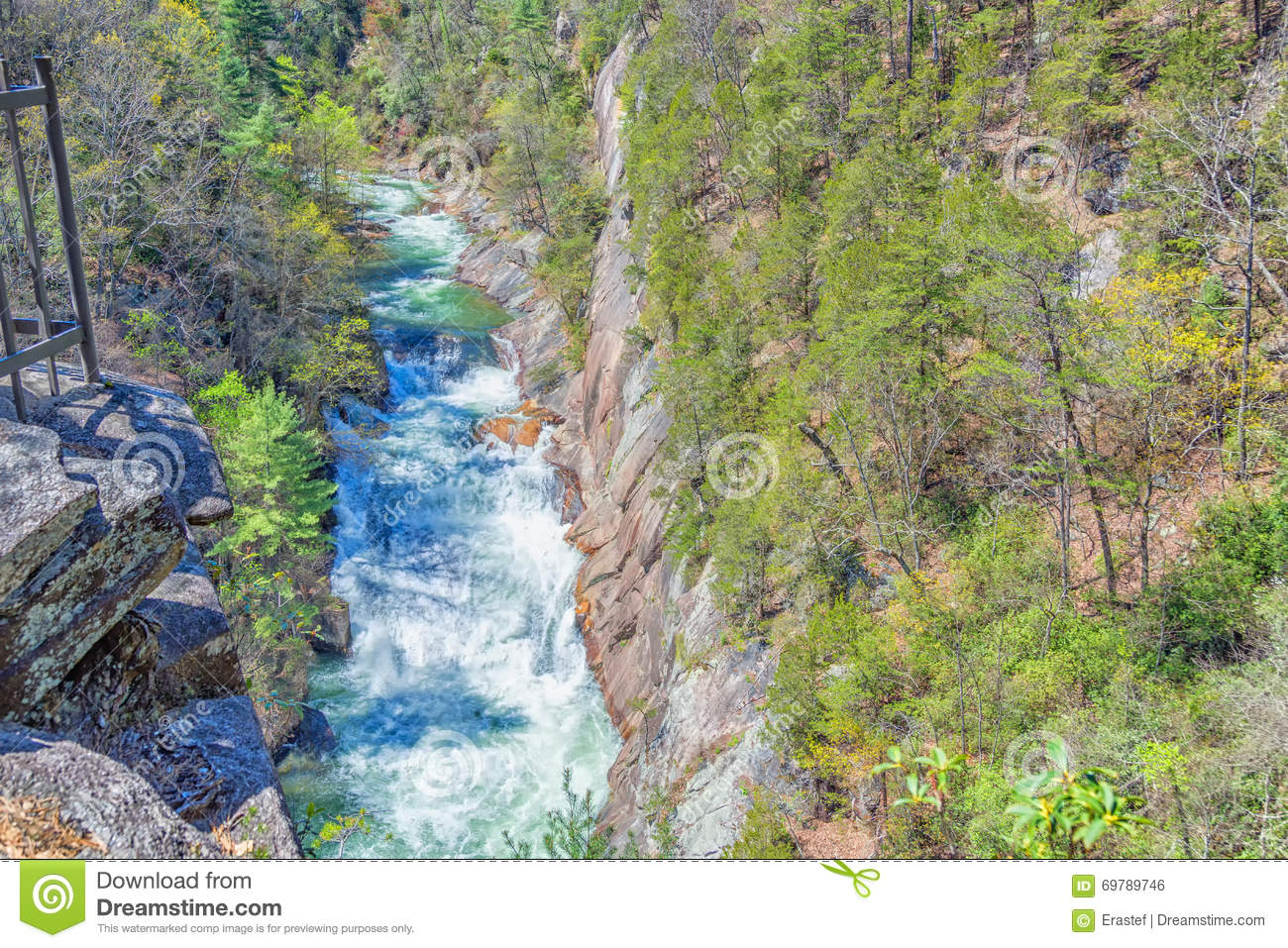 Whitewater, State Park, Georgia Stock Photo - Image of