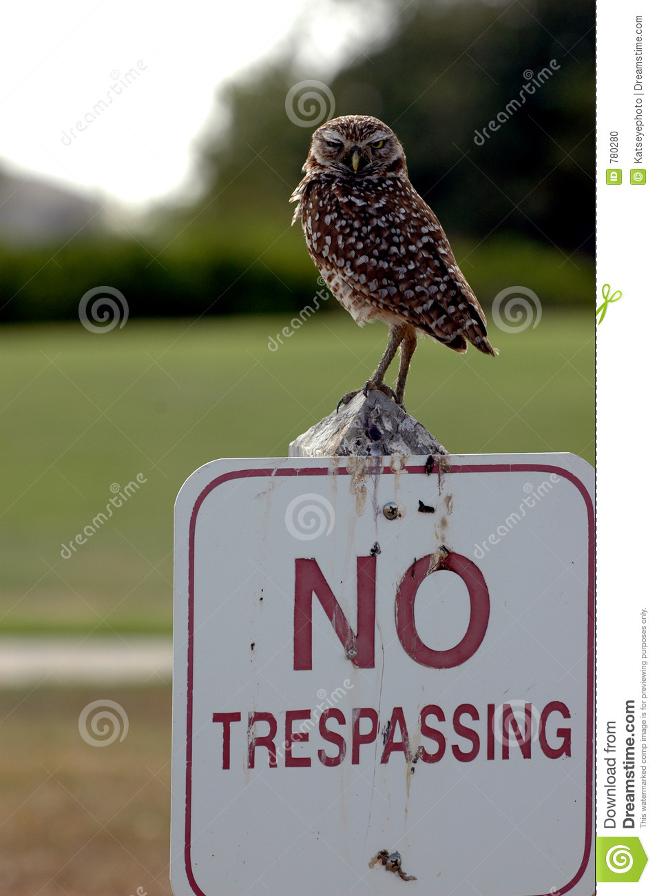 Who s trespassing?