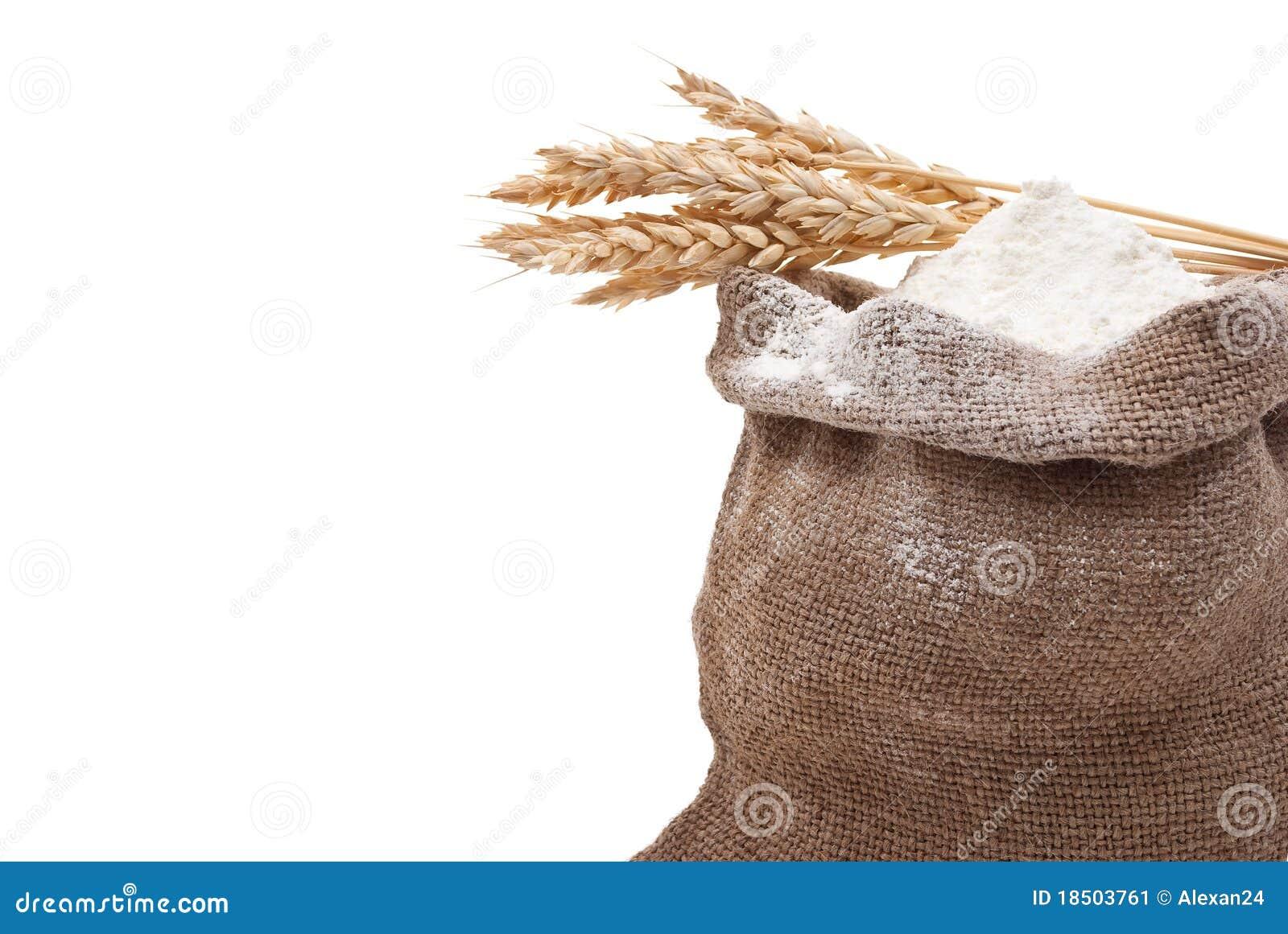 how to use whole wheat flour