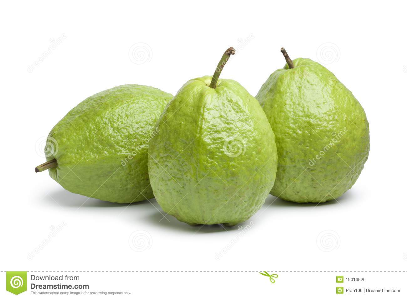 whole fresh guava fruit stock photo image of studio free march clip art images free march clip art flowers