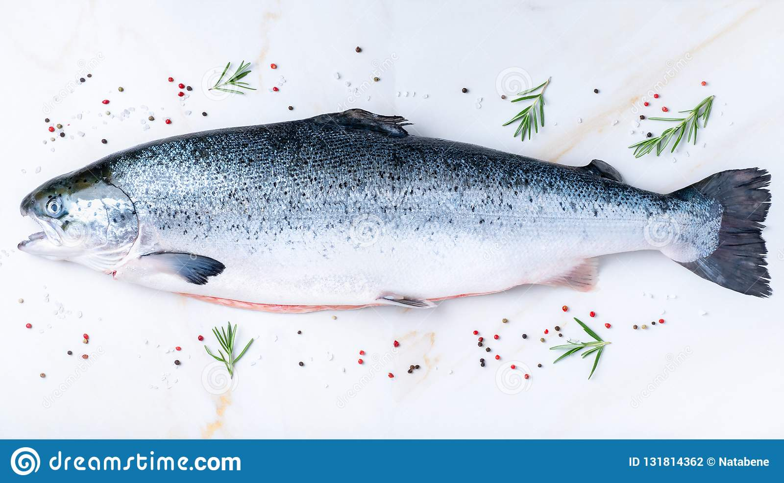 whole fresh raw big salmon fish with seasoning, salt, pepper, rosemary on white marble table, top view, long banner format