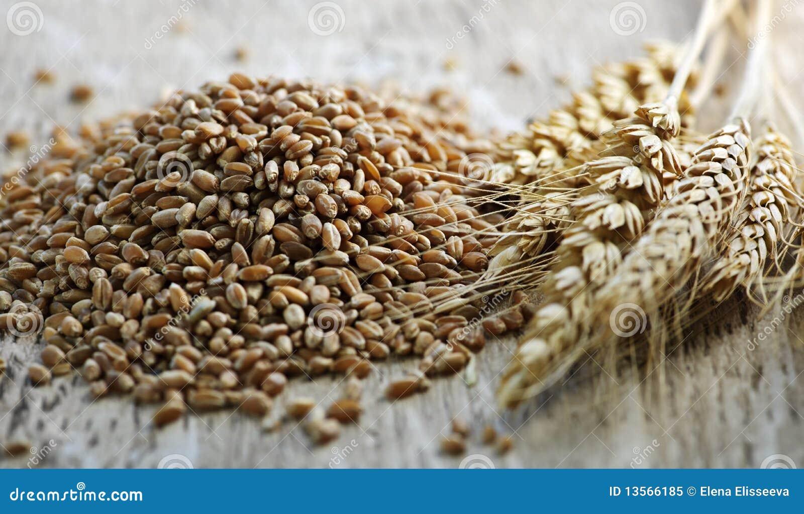 Wheat Free Vegan Foods