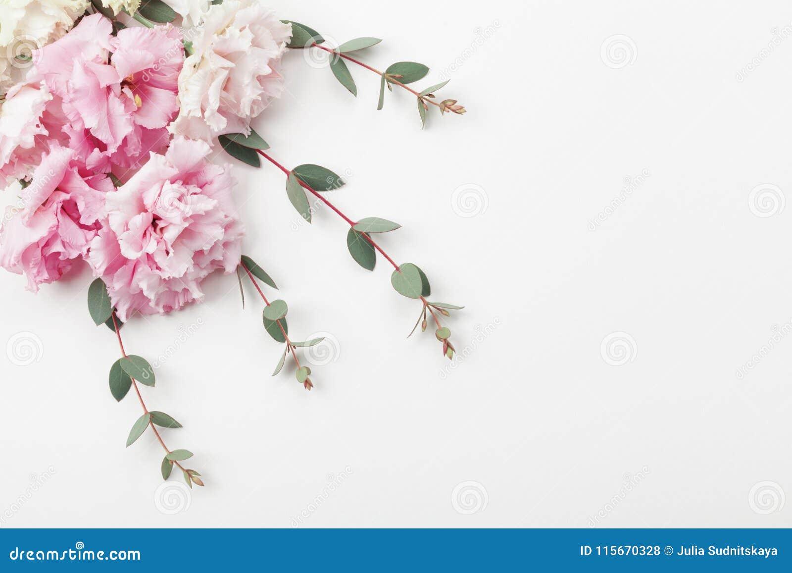 Wiązka piękni kwiaty i eukaliptus opuszcza na białym stołowym odgórnym widoku mieszkanie nieatutowy styl