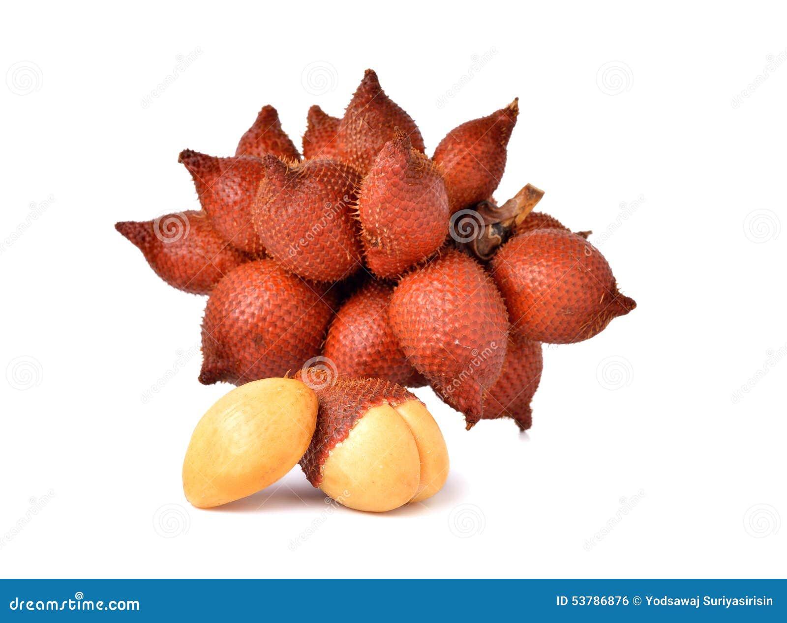 Wiązka salacca owoc na bielu
