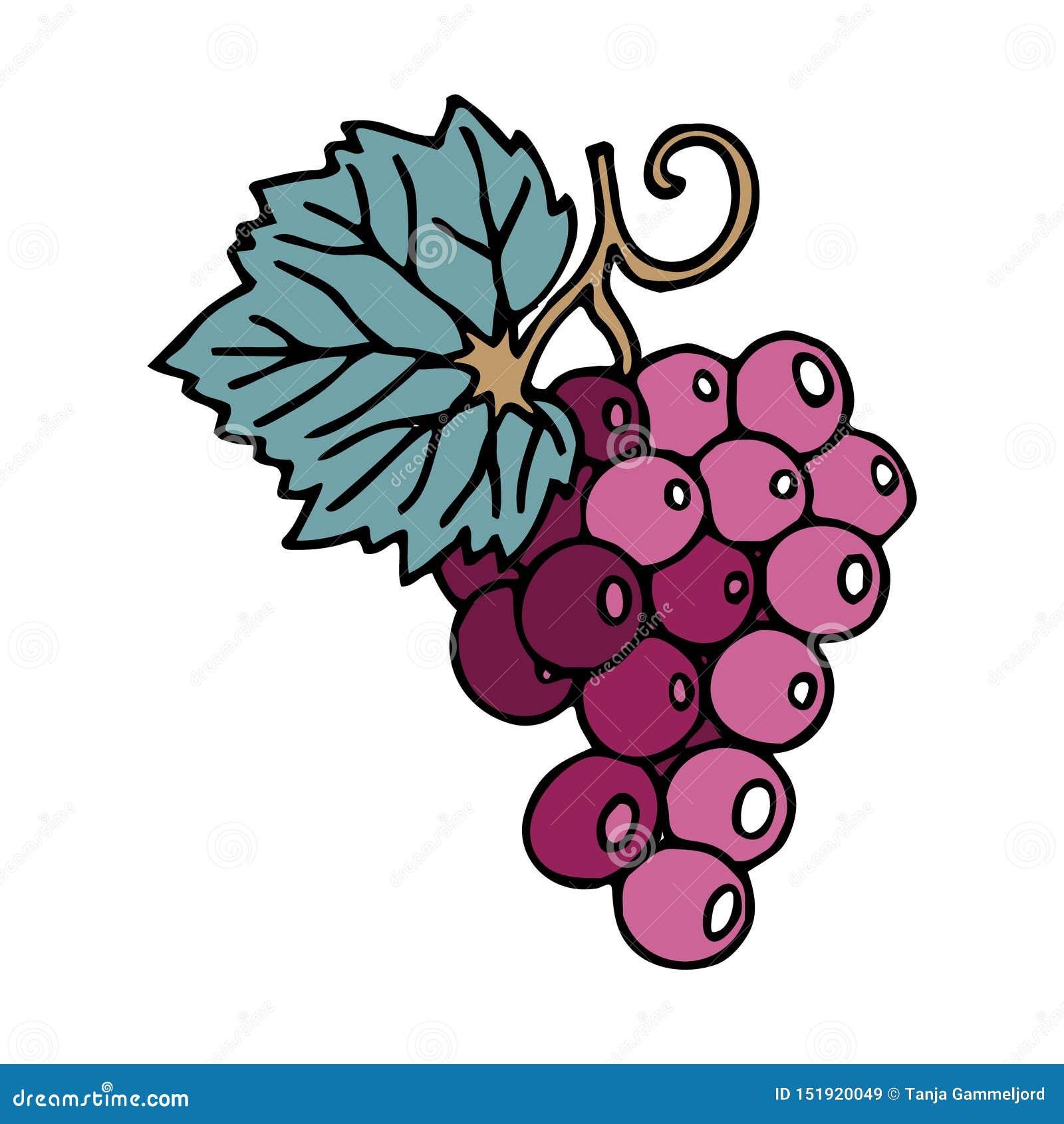 Wiązka winogrona w doodle stylu z uderzeniem