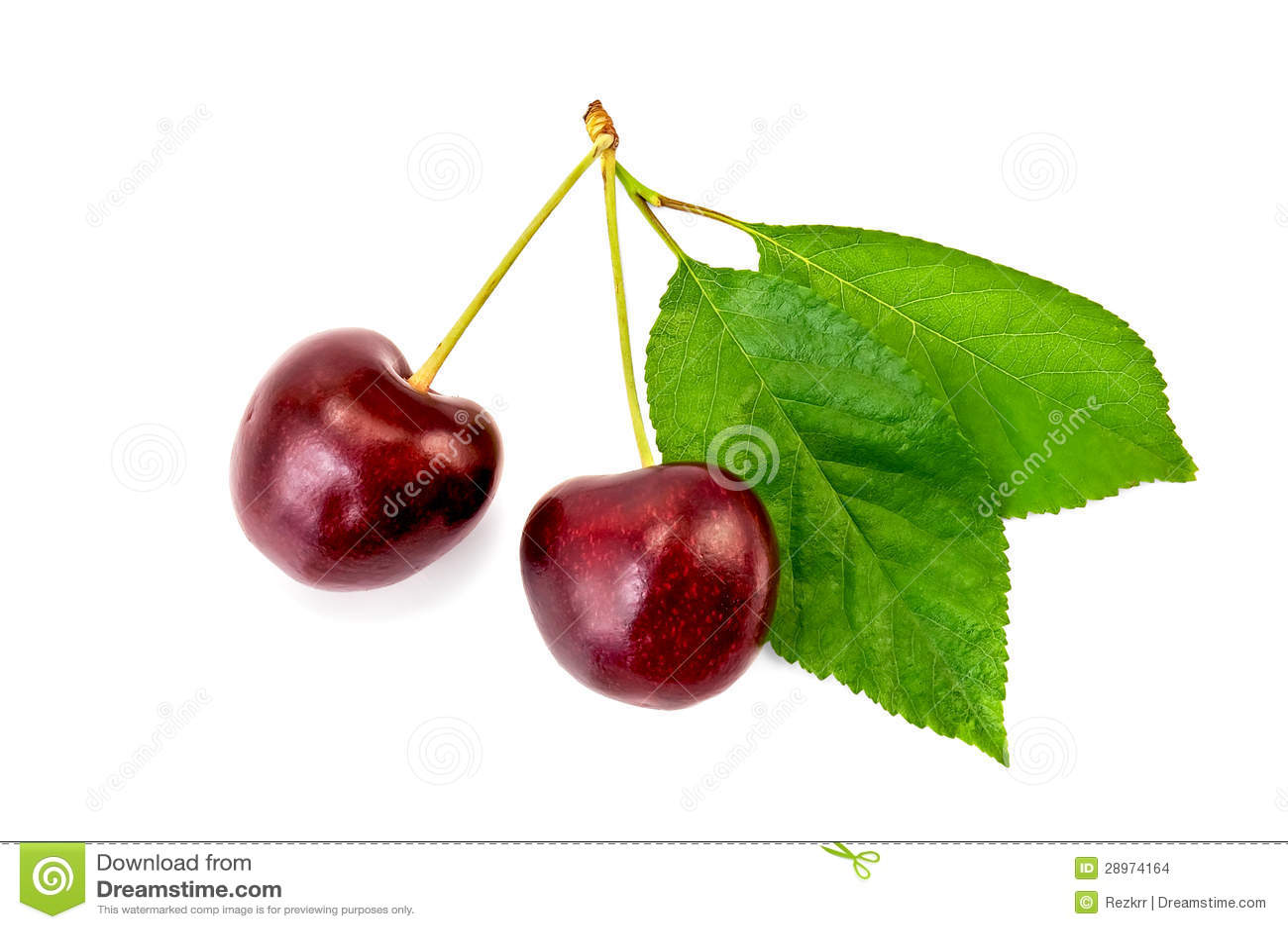 Wiśni dwa jagody