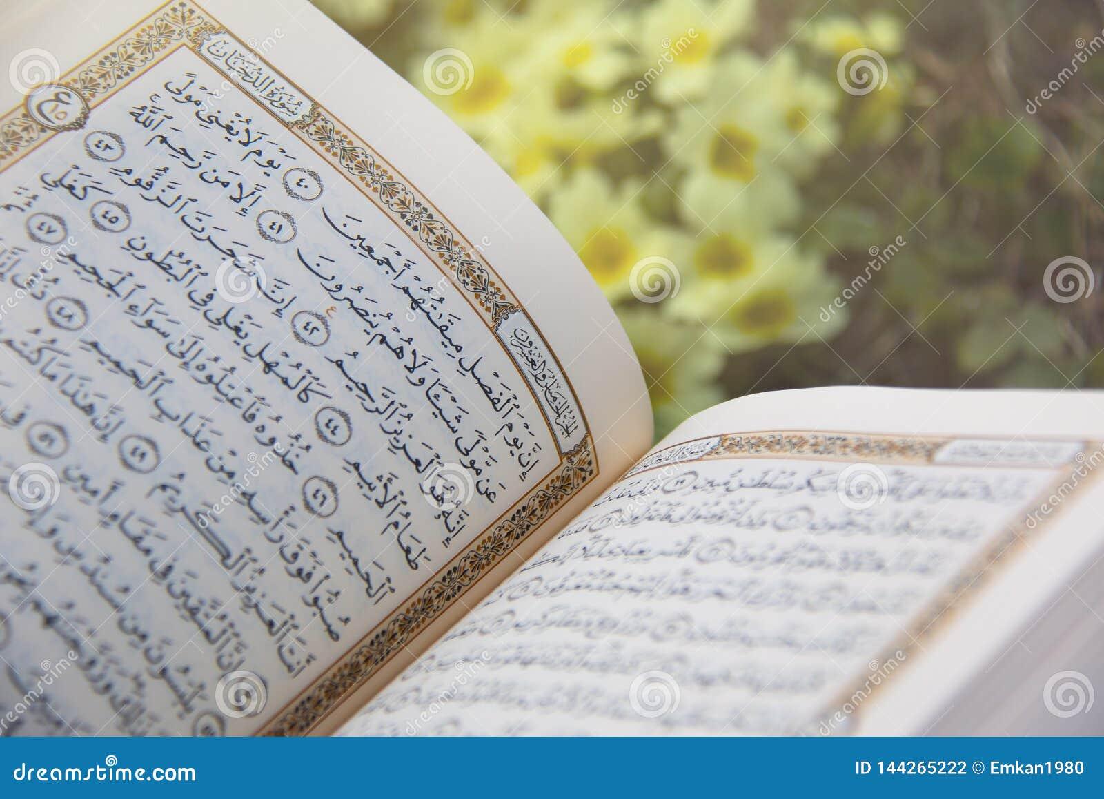 ?wi?ty koran - Islamska ?wi?ta ksi?ga