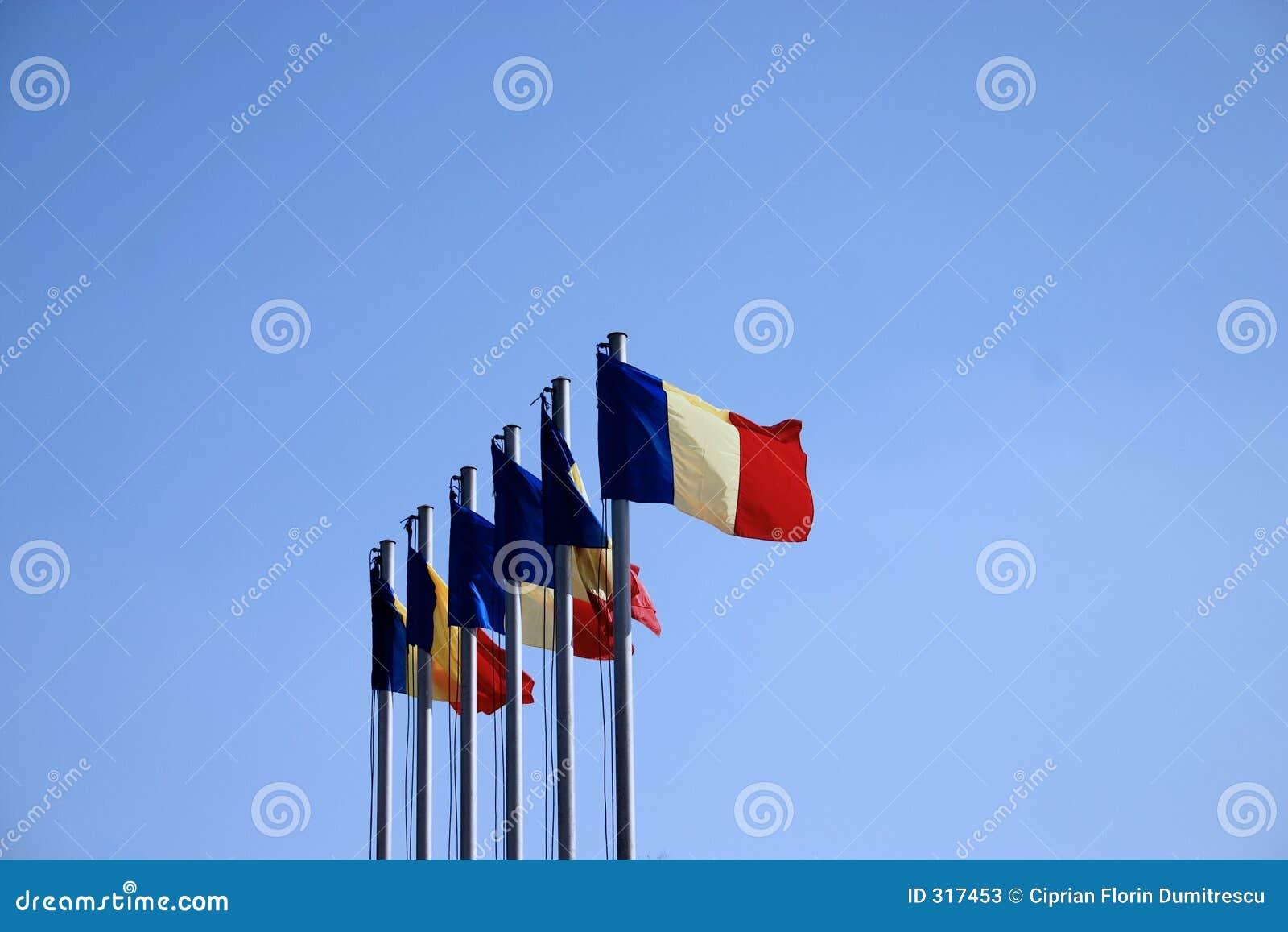 Wiatr flagę