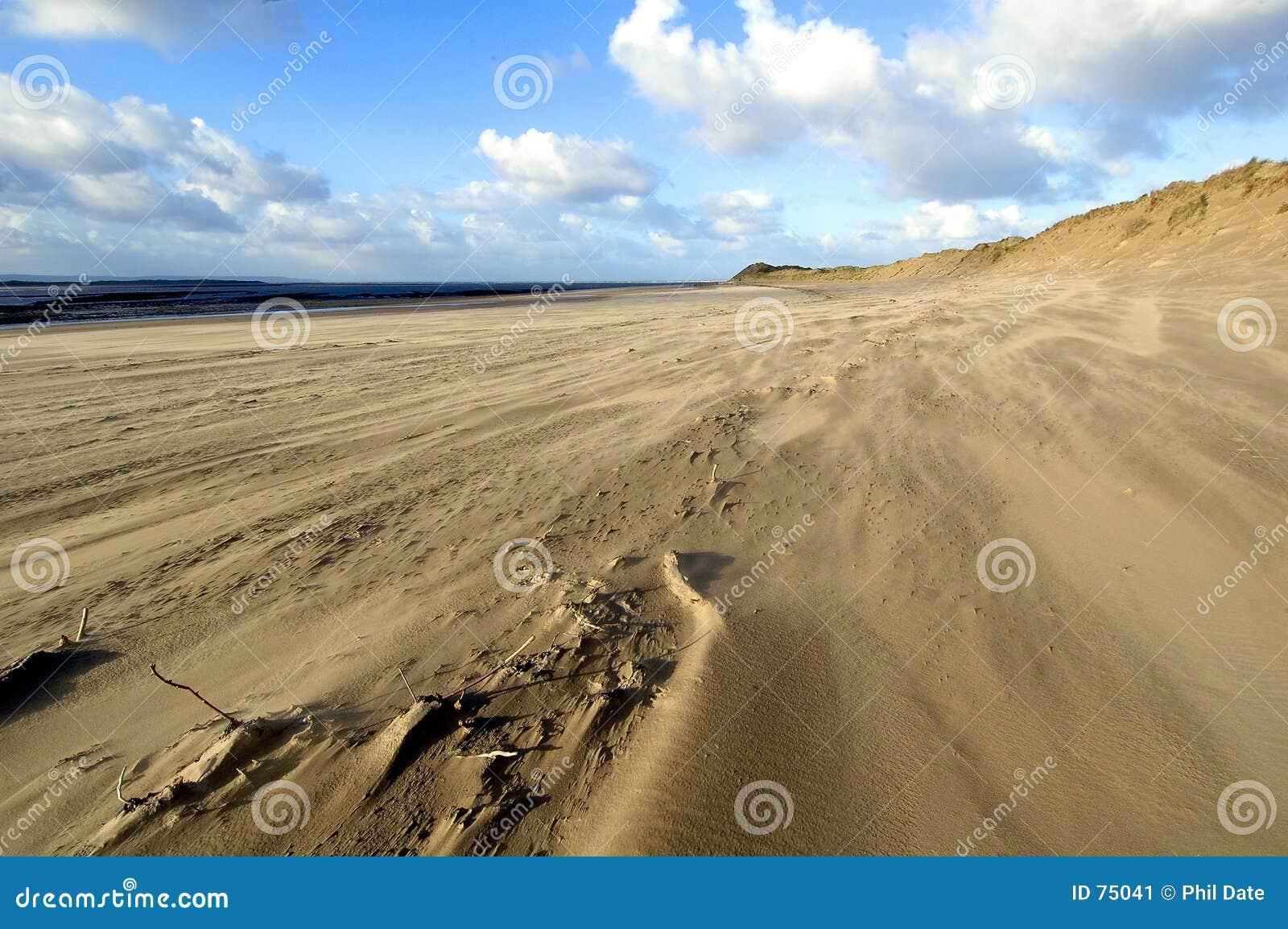 Wiatr na plaży