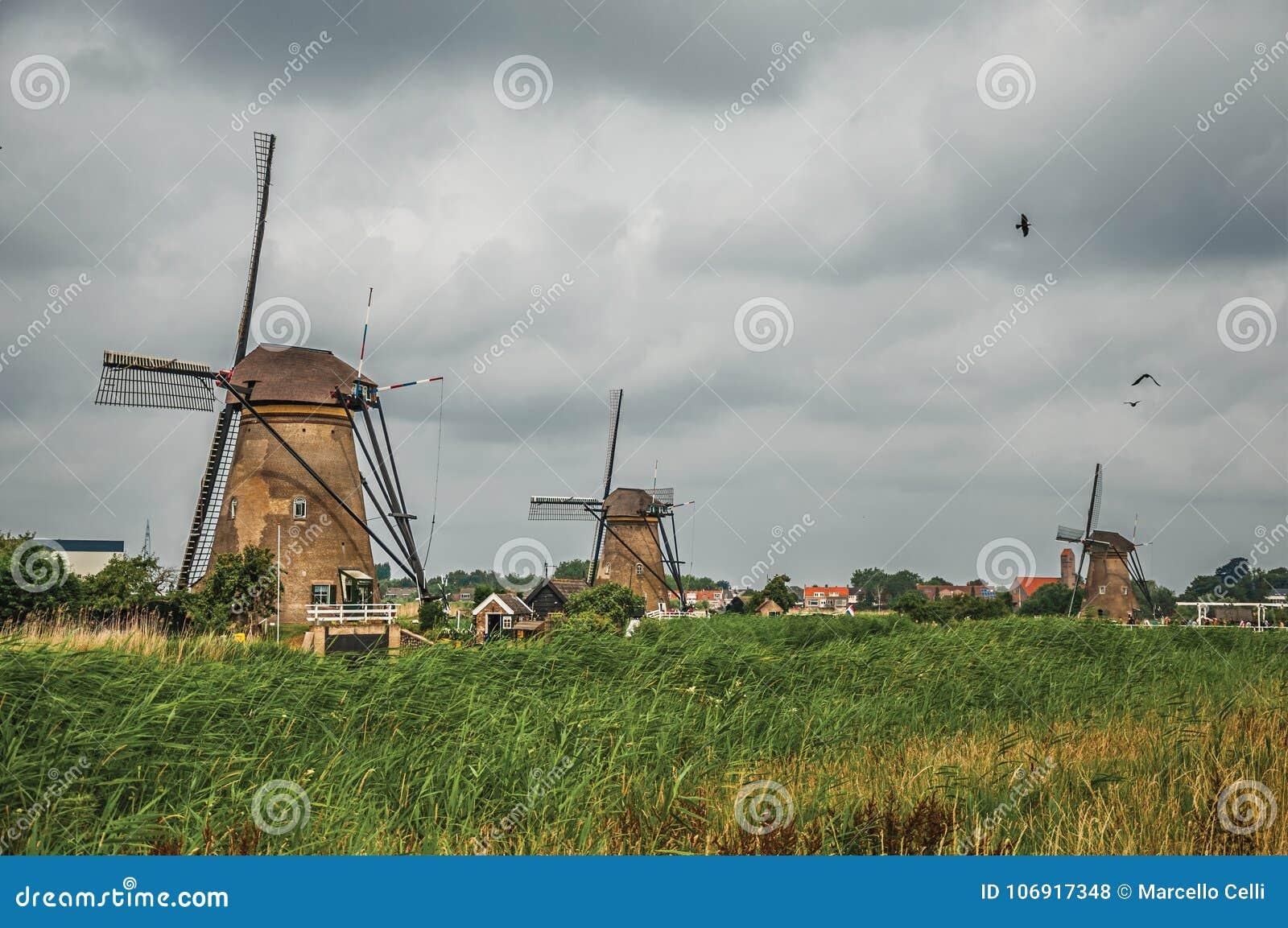 Wiatraczki i wysocy krzaki na banku kanał w chmurnym dniu przy Kinderdijk