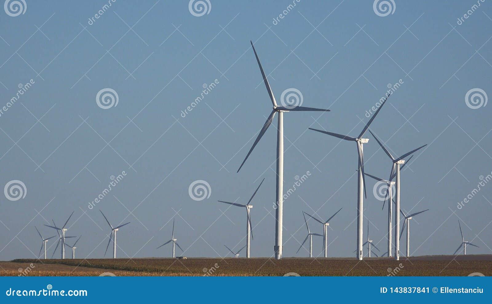 Wiatraczki, silniki wiatrowi, rolnictwa pszenicznego pola generatorowa w?adza, elektryczno??