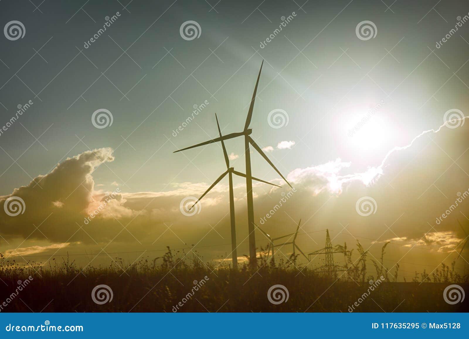 Wiatrowa roślina w Europa, zasilający generatory