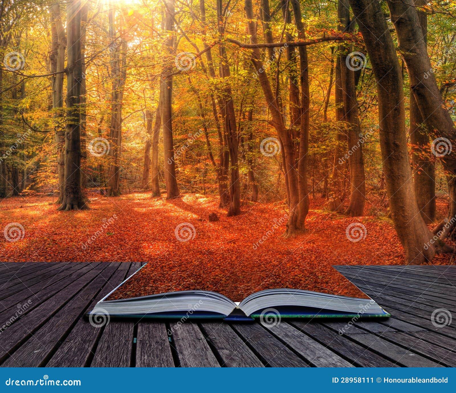 Wibrujący jesień spadku lasu krajobrazu wizerunek w stronach książka