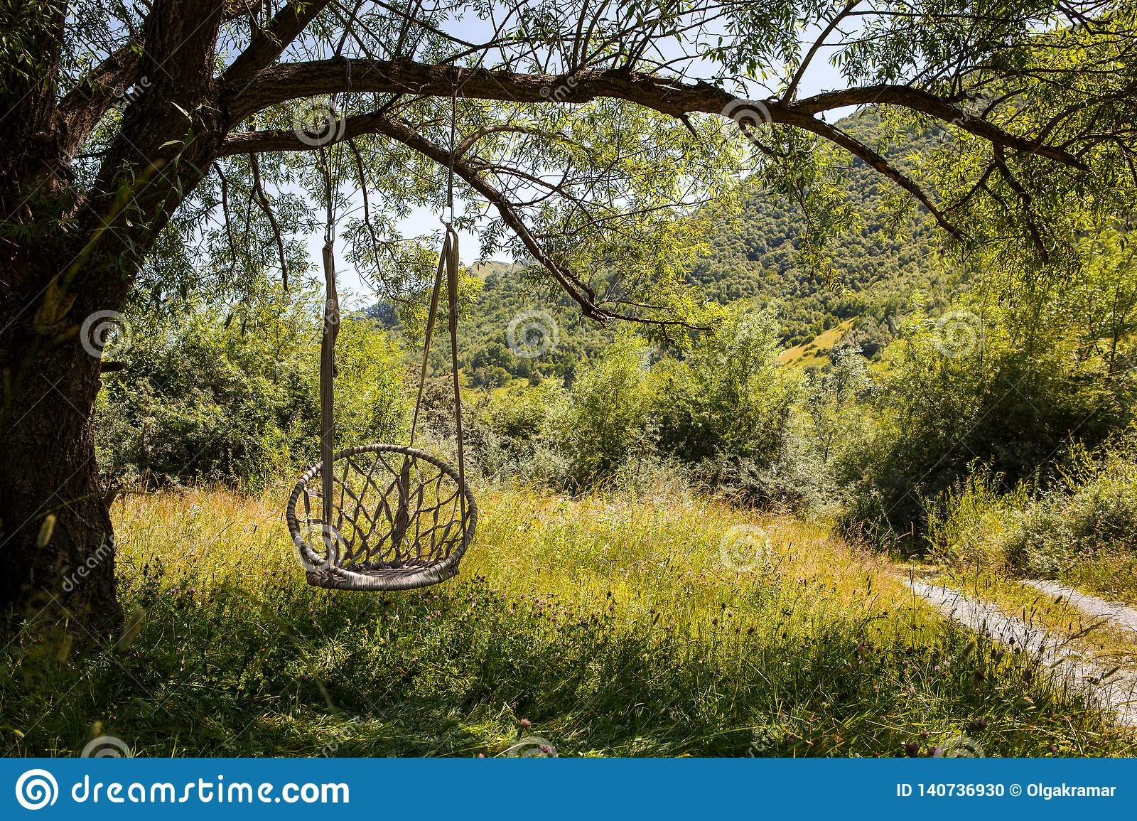 A Wicker Swing Chair Hangs On A Large Tree Branch Stock Photo Image Of Large Empty 140736930