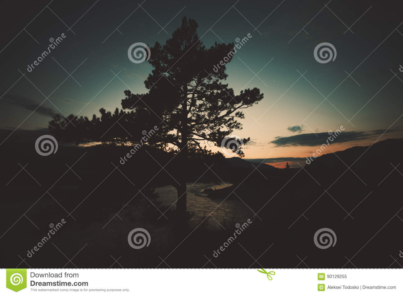 Wide Angle Shooting Of Tree In Mountains Settings Stock