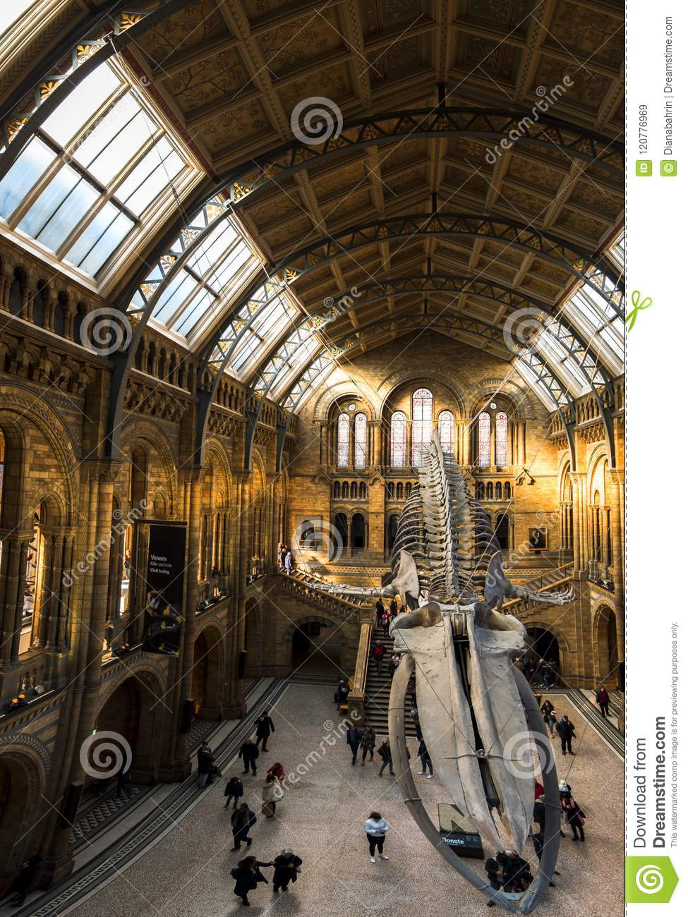 Wide view of the entrance to the Natural History Museum. Large blue whale skeleton on display and stunning architecture