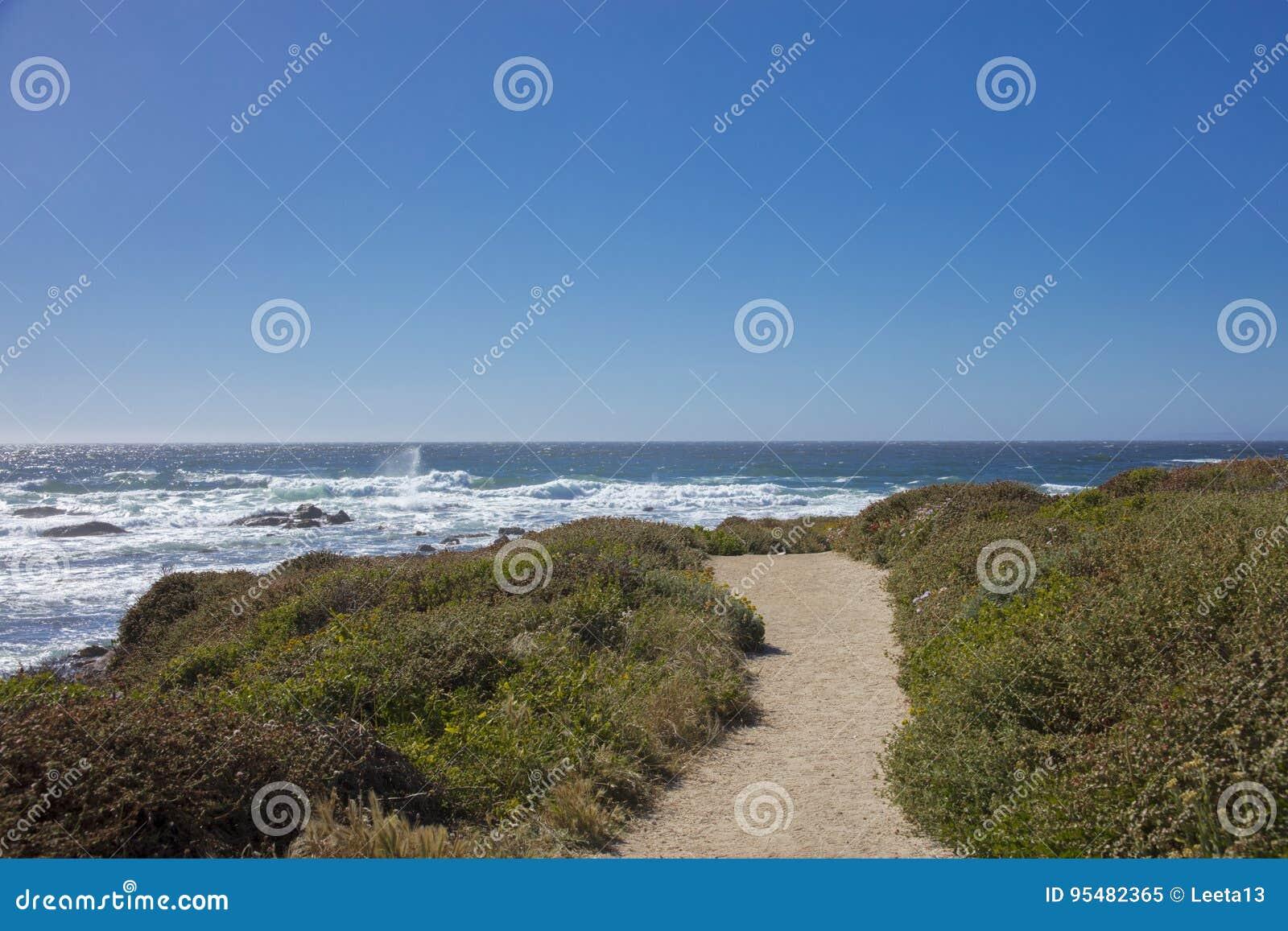 Widok ścieżka wzdłuż wybrzeża 17 mil przejażdżka Kalifornia