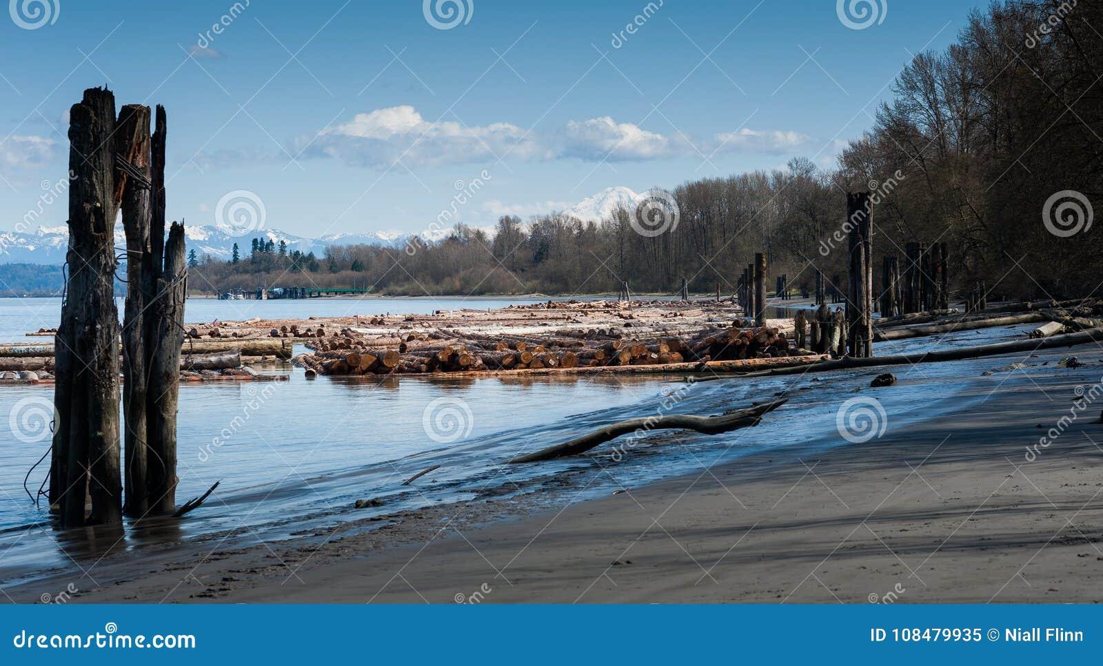 Widok bele wzdłuż Fraser rzeki, kolumbiowie brytyjska