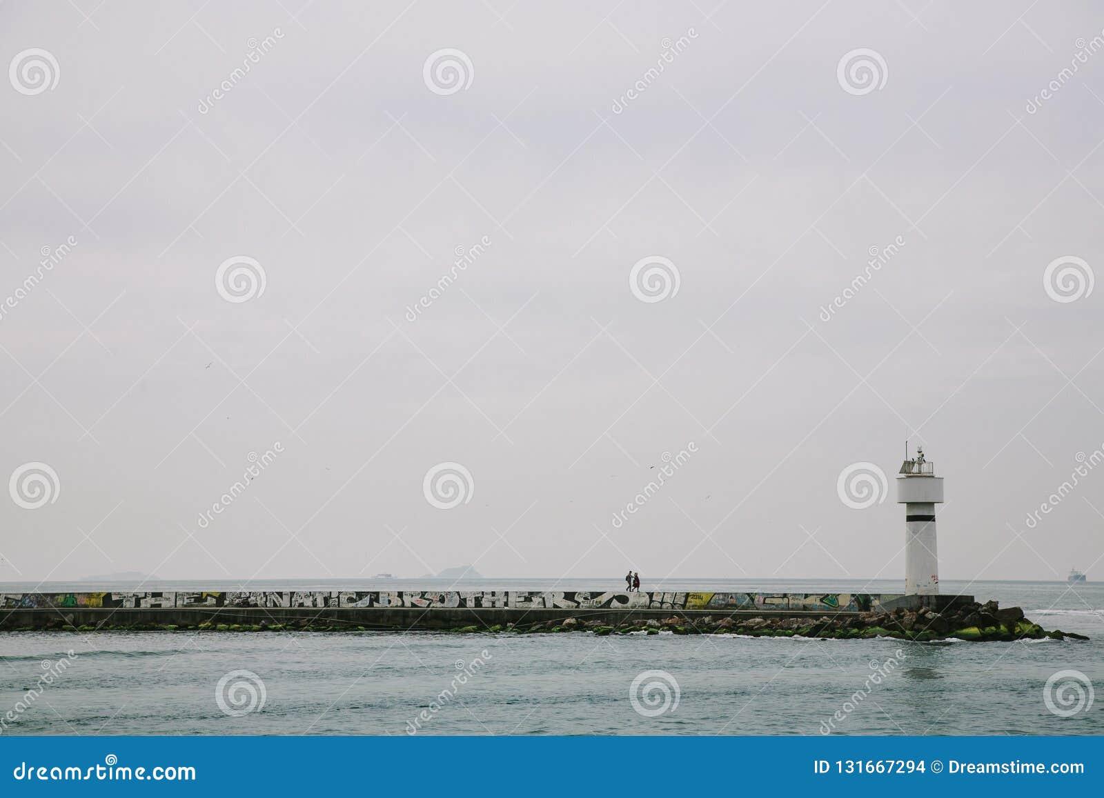 Widok Bosphorus na chmurnym dniu Istanbuł, Turcja