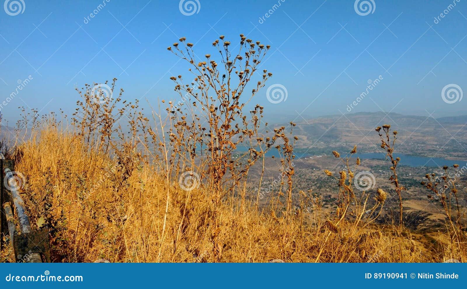 Widok górski przy dnia czasem