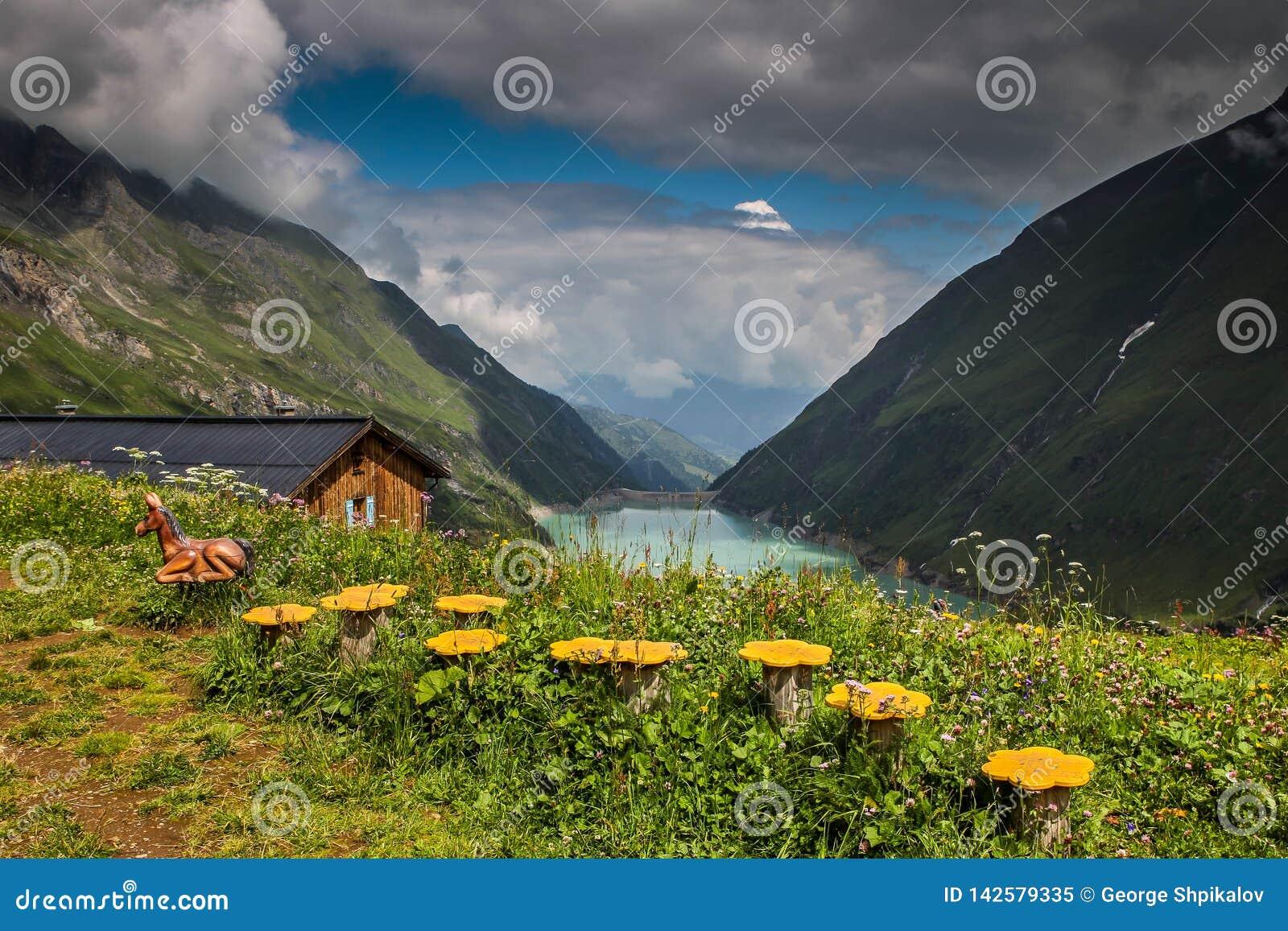 Widok idylliczna halna sceneria w Alps z świeżymi zielonymi łąkami w kwiacie i błękitnym jeziorze na słonecznym dniu w lecie Aust