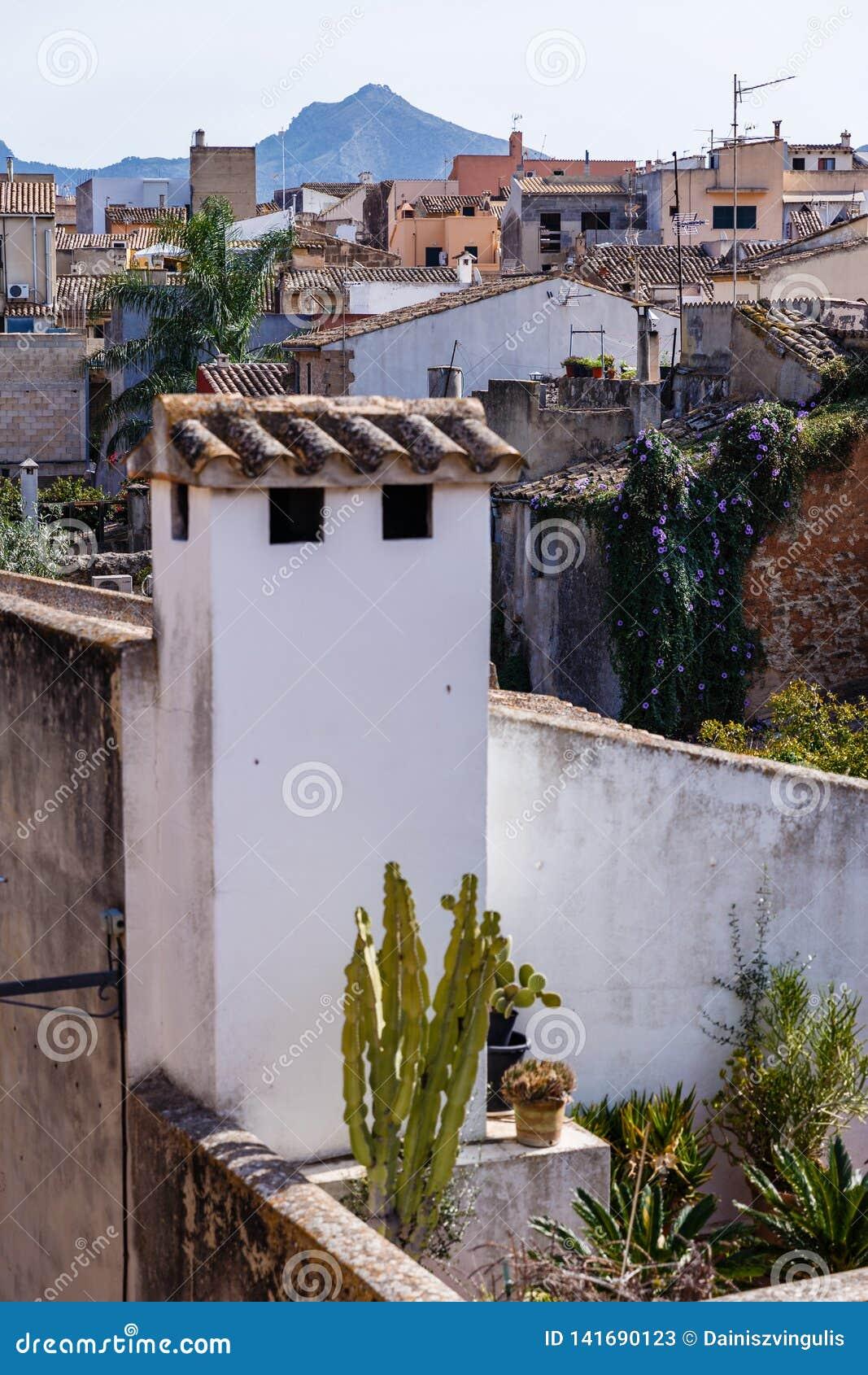 Widok miasto różnorodni dachy